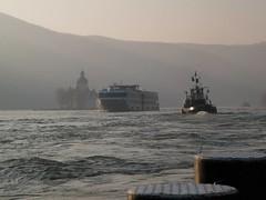 1185177_1397793290448147_1220131442_n (Lorenz.E) Tags: rhine rhein barge pfalz kaub binnenschiff binnenschifffahrt inlandnavigation vorspann rheinschifffahrt