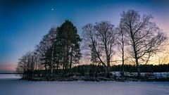 Iisalmi (Tuomo Lindfors) Tags: trees winter sunset moon snow ice suomi finland shore lumi talvi kuu ranta j auringonlasku puut iisalmi niksoftware viveza sharpenerpro porovesi theacademytreealley analogefexpro