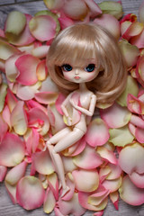 Lilas (Blublue) Tags: pink blue roses green rose nude spring doll forum contest dal bleu blond blonde groove nue lilas poupe nudit junplanning blublue pullipland