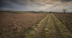 Looking towards Risley (djwwestwood) Tags: field westwood 1020 leefilters bigstopper djwestwood