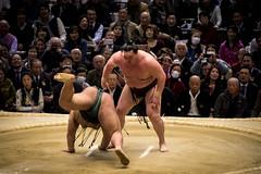 Sumo in Osaka-47 (Rodrigo Ramirez Photography) Tags: japan amazing traditional professional tournament osaka sumo yokozuna ozeki makuuchi hakuho sumotori sumotournament maegashira reikishi harumafuji topdivision