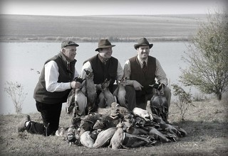 Hungary Luxury Driven Pheasant Shoot 42