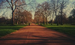 The path is clear but the path you take is completely up to you make sure it's the right one for you  #quote #London #Park #life #sunny #goals #ideas #world #idea #beauty #beautiful #amazing #love #path #word #walk #believe #motivated #motivation #motivat (fahimahmed507) Tags: world life park uk trees london love nature beautiful beauty word idea amazing god quote path walk like sunny follow blessing believe goals motivation ideas motivational motivated