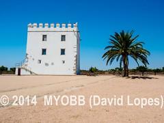 Portugal 2014-9011576 (myobb (David Lopes)) Tags: portugal vineyard europe wine olympus winery tasting monsaraz alentejo grape evora omd vinhos 2014 em1 reguengosdemonsaraz esporao montevelho herdadedoesporao
