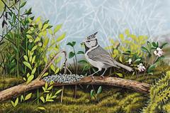 "Artwork ""European Crested Tit"" 2015 (Wild Chroma) Tags: art nature birds illustration painting drawing wildlife markers letraset tria artwor cristatus lophophanescristatus lophophanes"