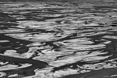 Meandering (fotoRschaffer) Tags: blackandwhite sunlight detail nature water monochrome river landscape flow island iceland stream wasser view natur riverbed remote outlook nordic aussicht schwarzweiss untouched landschaft sandbanks sonnenschein meandering travelphotography suurland reisefotografie unberhrt flussbett nordisch sandbnke mandern abgelegen tungna deepnorth highlandsoficeland hohernorden islndischeshochland alainschaffer fotorschaffer