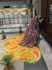 IMG_2747 (cayuill) Tags: india 2016 andhrapradesh visakhapatnam visag