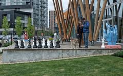 Public Art Scenes (Sherlock77 (James)) Tags: people sculpture woman dog eastvillage man calgary downtown streetphotography patio giantchessset