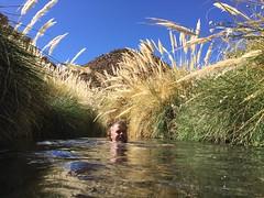 - 2016-05-12 at 15-01-47 + hot water springs