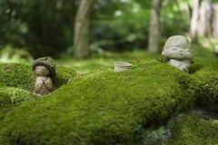 Warabe Jizo, Kyoto (Yoshitane) Tags: garden moss