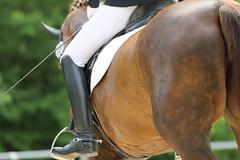 IMG_1466 (dreiwn) Tags: horse pony horseshow pferde pferd equestrian horseback reiten horseriding showjumping dressage reitturnier dressur reitsport dressyr ilsfeld dressuur ridingclub junioren ridingarena pferdesport springreiten reitplatz reitverein dressurreiten dressurpferd dressurprfung tamronsp70200f28divcusd jugentturnier