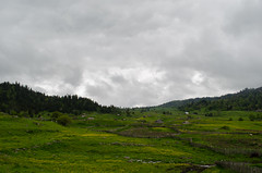 DSC_0193 (Andgula) Tags: trees wallpaper green clouds landscape nikon cloudy outdoor hiking d5100