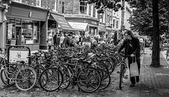 Bicycle week in York. (steve.gombocz) Tags: street york bw noiretblanc zwartwit streetphotography bikes olympus bicycles blacknwhite greyscale streetphotos noirblanc negroyblanco bwphotos svarthvitt negroblanco neroebianco schwartzweiss olympuscamera nerobianco sortoghvid olympususers olympusdigitalcamerausers svartochvitt schwartzundweiss svartoghvitt flickrbw bwflickr flickrstreet olympusbw olympusm25mmf18 olympusem5mark2 olympusm25mmf18lens olympusmicro43rdcamera nustavalkoinen czarnyibiaty micro43rdsuk flickrblackwhitephotos olympuszuikogigitalclub