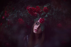 Darkness has fallen (new album) (Lichon photography) Tags: face portrait women girl flower flowers roses summer me selfportrait conceptualidea concept idea colors rose red redrose nymph pretty beauitful female garden photoshop eye darkness gardennymph people surreal surrealportrait blueeyes photoshoot selftimer flora plant tones darktones creative original thought dream dreaming beauty love creativeselfportrait cosplay quality stunning floras preset