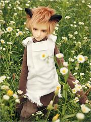 Happy July! (Human Beans) Tags: wien flowers nature bjd abjd flowerfield leeke leekeworld