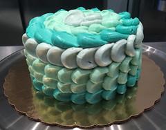 IMG_0243 (littledaisybaker) Tags: cake ombre ladyfinger