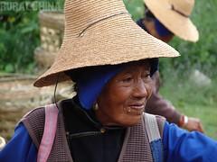 Bai lady