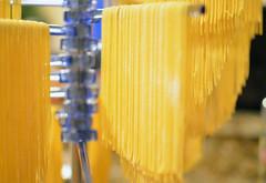 Pasta Tree (Siyalw) Tags: dinner pasta homemade homemadepasta angelhairpasta freshpasta pastatree thinspaghetti pastadryingrack dryingpasta semolinapasta semolinaandeggpasta freshsemolinaandeggpasta