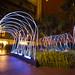 Xarxa luminescent al Jardí romàntic de l'Ateneu Barcelonès