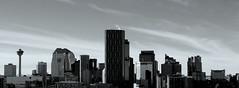 Skyline (chrisroach) Tags: blackandwhite bw calgary monochrome skyline skyscraper blackwhite
