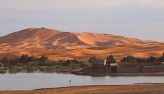 Morocco-Oasis