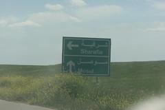 Alqosh Iraq Sharafia Mosul 15.04.2015  TR_08641 (Thomas Rossi Rassloff) Tags: iraq religion christen r mosul assyrian npu ninive beten glaube ebene kämpfen christentum christans aramäisch assyrisch alqosh sharafia 15042015