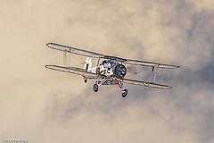 Fairey Swordfish Mk II LS326 (alan-evans) Tags: england unitedkingdom aviation transport fairey lowestoft displayteams rnhistoricflight lowestoftairshow2012 faireyswordfishmkiils326