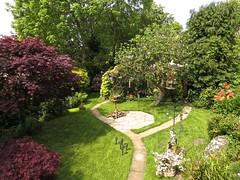 1427 Back garden view (Andy panomaniacanonymous) Tags: 20160527 fff flowers garden gardenflower ggg