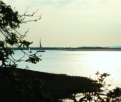 West Itchenor (ekaterina alexander) Tags: pictures sea england west tree boats photography sussex oak branch sailing view harbour alexander chichester itchenor ekaterina