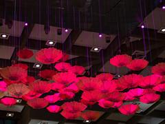 Parapluie Complexe D / Umbrella (Mad Blike) Tags: lighting light umbrella montral lumire montreal decoration panasonic glowing dcoration parapluie clairage complexedesjardins panasoniclumix rutilant lumixgvario35100f28 panasonicgx7