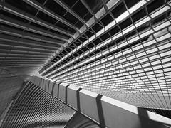Lige-Guillemins...... (pen3.de) Tags: finearts sw sww penf linien strulturen monocrome calatrava architektur bahnhof lttich