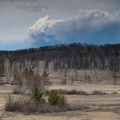 Waldbrand 1x1 (swissgoldeneagle) Tags: wood forest russia ru wald 1x1 russland rx100 zabaykalskiykray rx100m4
