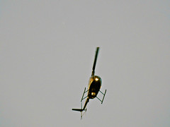 A Drug Searching Helicopter ?  .. Nous trouverons les producteurs de drogues illicites (Bob (sideshow015)) Tags: ontario canada nikon p900 drugs illegal marijuana mississauga drogues illicites