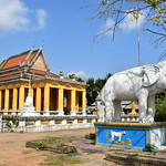 Yellow Buddhist Temple and White Elephant 2 thumbnail