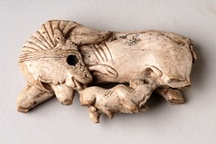 Nimrud ivory cow and calf furniture inlay - 858-681 BC (BoltonLMS) Tags: archaeology museum cow ancient bolton calf nimrud neoassyrian calah kalkhu ancientiraq fortshalmaneser boltonmuseum