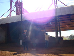 Silos en Paraguay01