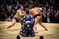 Sumo in Osaka-21 (Rodrigo Ramirez Photography) Tags: japan amazing traditional professional tournament osaka sumo yokozuna ozeki makuuchi hakuho sumotori sumotournament maegashira reikishi harumafuji topdivision