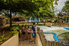 SE_Ubatuba0288 (Visit Brasil) Tags: horizontal arquitetura brasil ubatuba sopaulo natureza turismo cultura lazer ecoturismo externa sudeste projetotamar comgente diurna brasil|sudeste brasil|sudeste|sopaulo brasil|sudeste|sopaulo|ubatuba brasil|sudeste|sopaulo|ubatuba|projetotamar