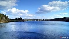 i'm blue @Butgenbach's Lake (Ld\/) Tags: lake lac eifel barrage butgenbach