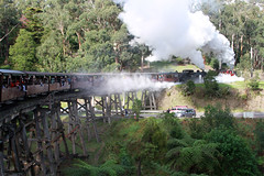 Puffing Billy Railway crossing the trestle bridge over Monbulk Creek and Gembrook Road (Greg_C2010) Tags: train railway victoria locomotive steamtrain belgrave dandenongranges puffingbilly trestlebridge puffingbillyrailway monbulktrestlebridge gembrooktobelgraderoad
