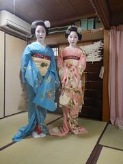 Mamefuji and Mamekiku (Kikyou chan) Tags: kyoto maiko tama gion okiya hanamachi kobu mamekiku mamefuji karyuukai