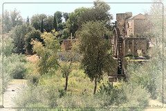 Le moulin du Guadalquivir (GilDays) Tags: espaa tree green mill water river moulin spain guadalquivir nikon eau explorer vert rivire andalucia explore espana cordoba andalusia espagne arbre andalousie cordoue d810 nikond810 anda0915