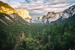 The Jealous Kind (Thomas Hawk) Tags: california usa america nationalpark unitedstates fav50 unitedstatesofamerica yosemite yosemitevalley fav10 fav25 fav100
