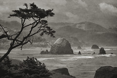 Ecola State Park (Sonlight Landscape Photography) Tags: alankepler beach cannon canon coast coastline ecolastatepark formation haystackrock infrared landscape nature ocean oregon outdoor park rock rocks sand scenery scenic sea seascape sonlightlandscapephotography tourism tourist travel vacation view water waves