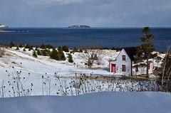March scene (Barry_Photos) Tags: winter house snow canada newfoundland island cove nl greenisland torscove torscovenl greenislandnl