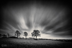 Walking in the Mudshine (ibriphotos) Tags: trees alva field clouds saturday ndx400 glenochil bigstopper