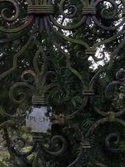 Iron conifer instruction (shaggy359) Tags: tree leaves saint sign st square word gate iron thomas somerset cricket push ironwork instruction