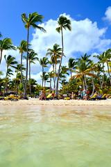 (Lipi2334) Tags: republica summer beach water sand agua deluxe playa palace arena verano dominicana celeste caribe barcelo bavaro