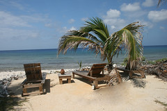 IMG_5453alt (PicNic Cards) Tags: ocean waves caves palmtrees caribbean caymanbrac