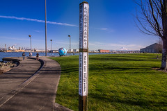 Global Market (writing with light 2422 (Not Pro)) Tags: mountrainier tacoma washingtonstate theafosswaterway storypole sigma1020mmlens globalmarket theafosspark sonya77 richborder